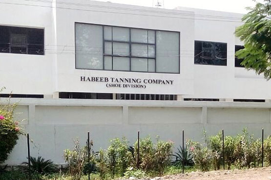 habeeb tanning company shoe division