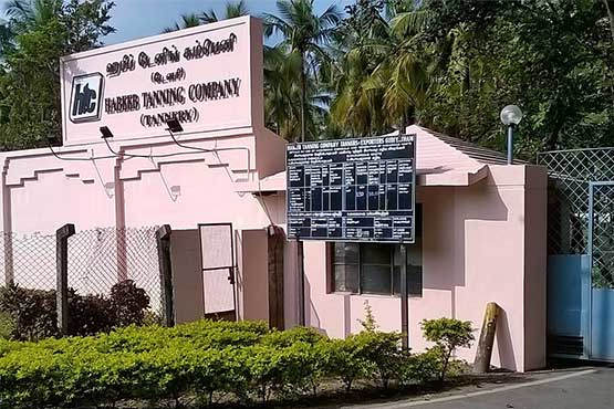 tannery division company India